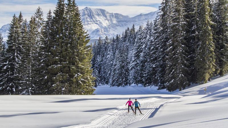 Winterspaß abseits der Skipiste im Chiemgau - langlauf-regionen allgemein