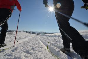 Langlaufregion Scheidegg im Allgäu