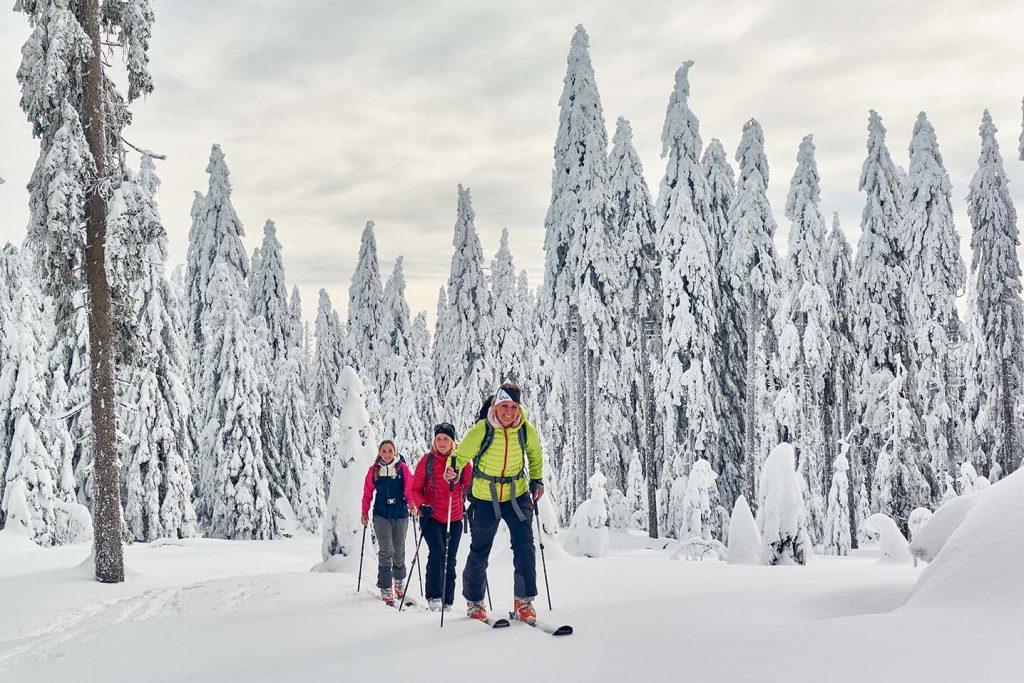 Skitourtag in Bodenmais, Großer Arber – © Marco Felgenhauer / Woidlife Photography