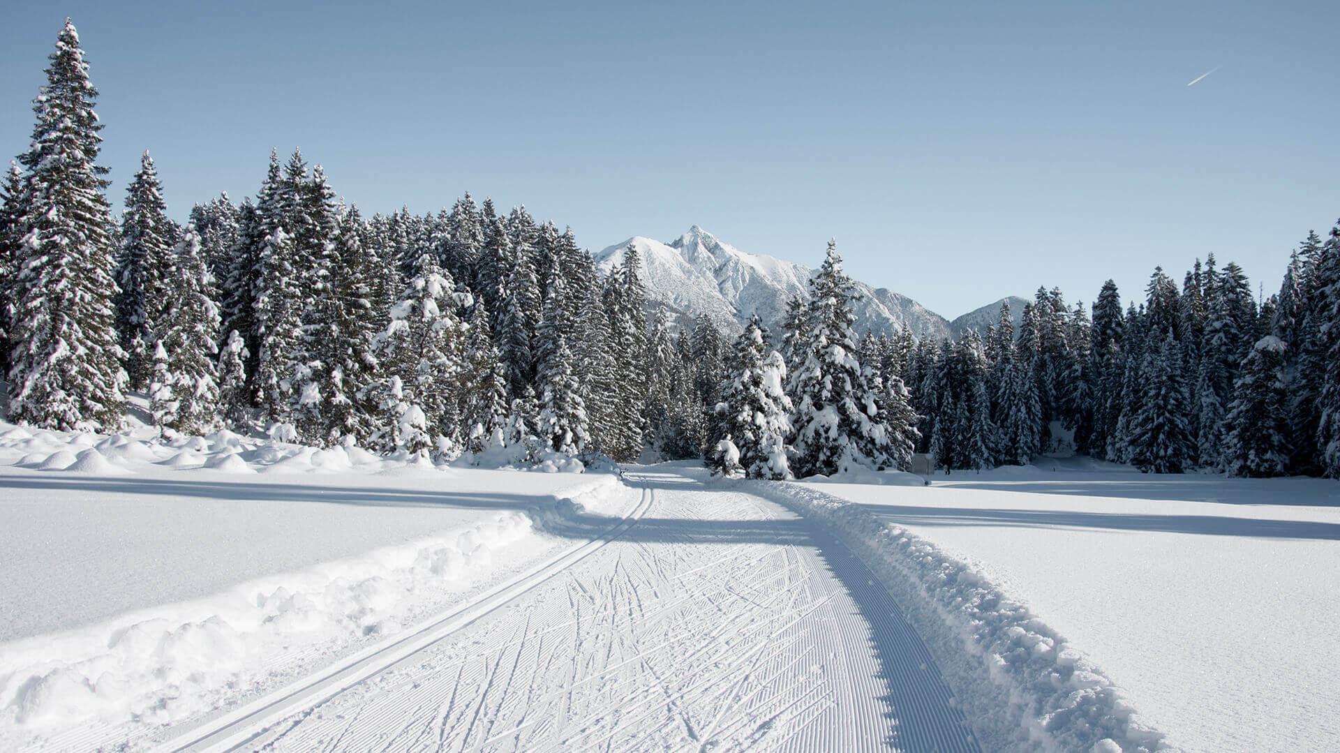 Langlaufloipe (1)_ © Olympiaregion Seefeld